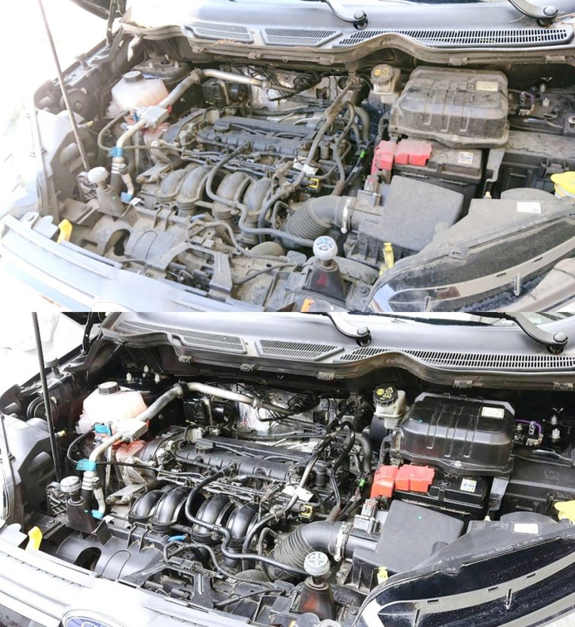 Cleaning_the_Engine_Bay